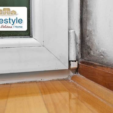 Seven Ways to Manage Mold in Your Home